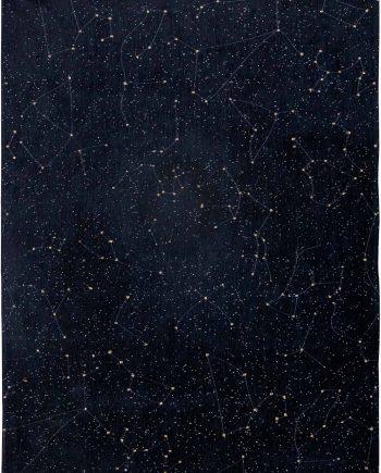 Louis De Poortere rug Fischbacher 9059 Celestial Night Sky